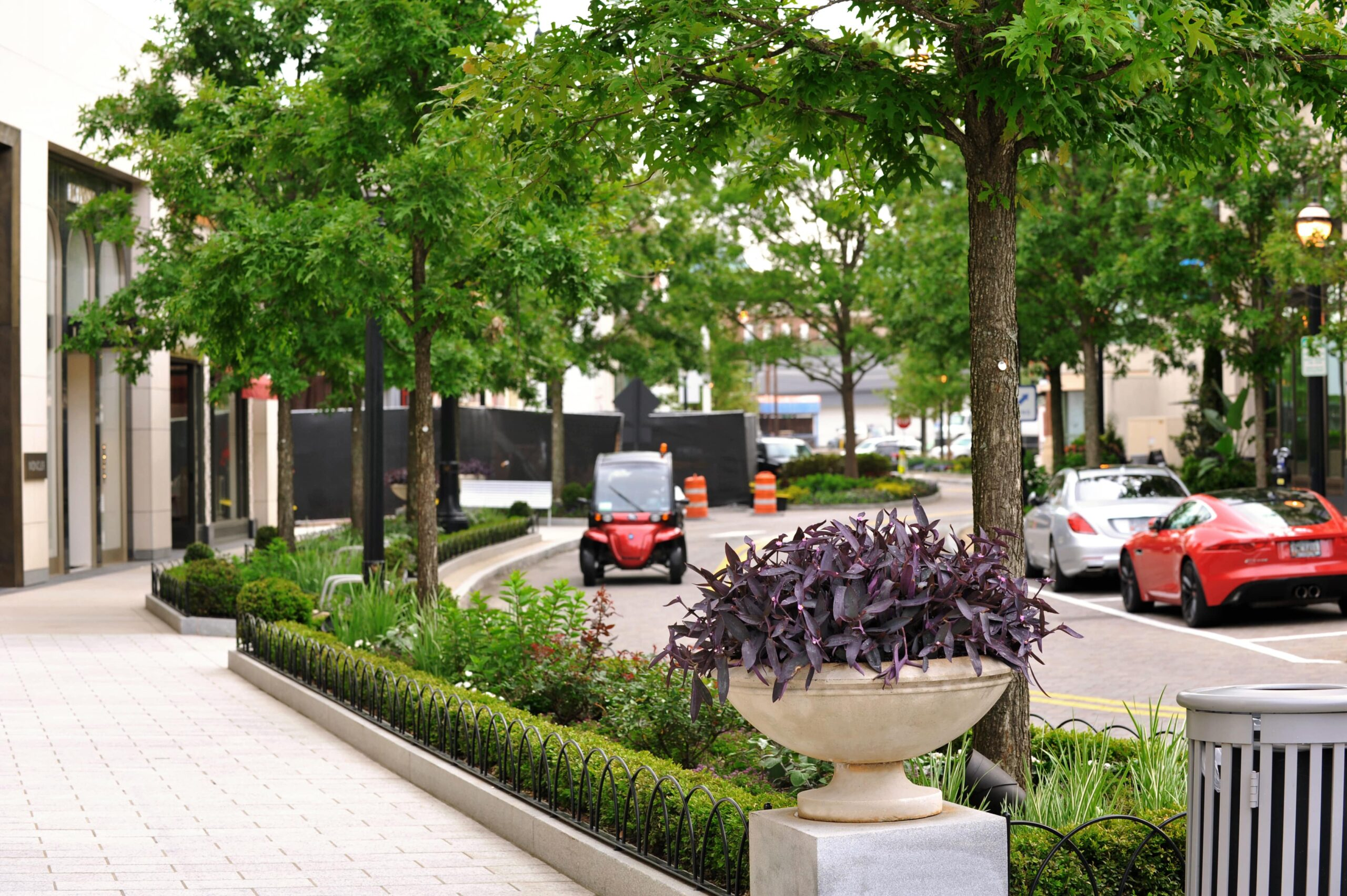 Buckhead Village District: How Landscaping Makes Daily Differences