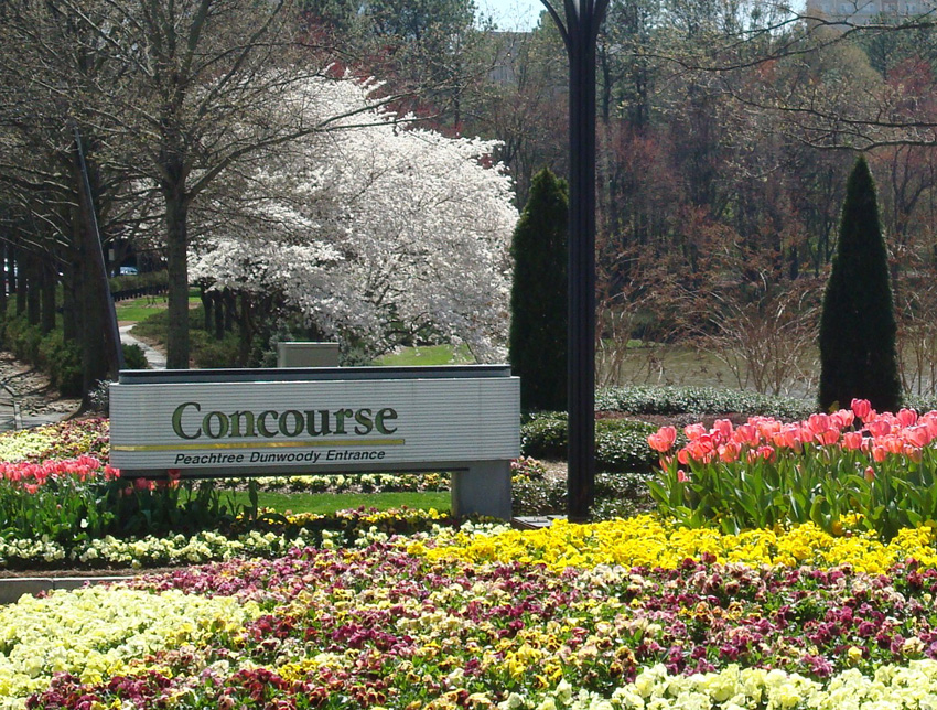Concourse Corporate Center: Caring for Atlanta's King and Queen